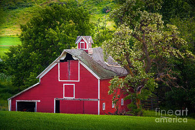 Rural Scenery Photograph - Palouse Barn Number 9 by Inge Johnsson