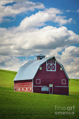 Palouse Country Art Print by Inge Johnsson
