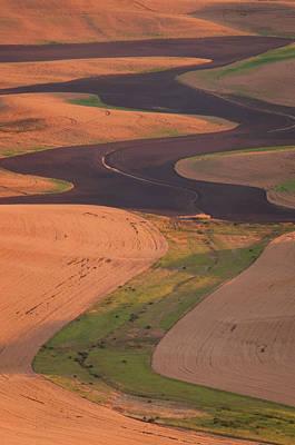 Photograph - Palouse Curve - Vertical by Michael Blanchette