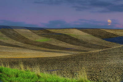 Photograph - Palouse Designs by Patricia Dennis