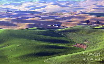 Photograph - Palouse Farm  2408 by Jack Schultz