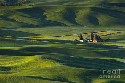 Photograph - Palouse Farm by Greg Vaughn - Printscapes