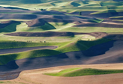 Photograph - Palouse Farmlands by Doug Davidson