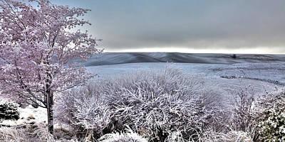 Photograph - Palouse Frost by David Patterson