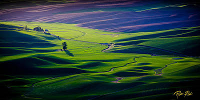 Photograph - Palouse - Later Afternoon by Rikk Flohr