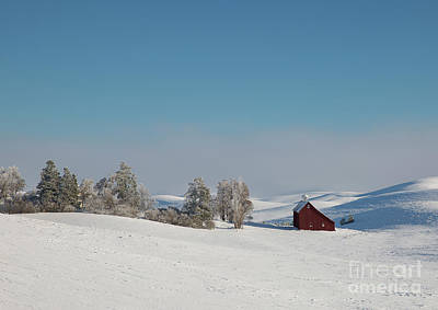 Photograph - Palouse Saltbox Barn Winter  II by Idaho Scenic Images Linda Lantzy