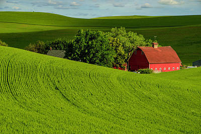Photograph - Palouse Scene With Red Barn by Roberta Kayne