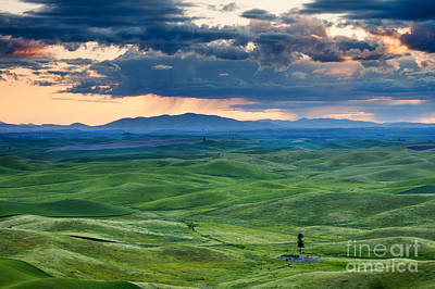 Green Photograph - Palouse Storm by Mike  Dawson
