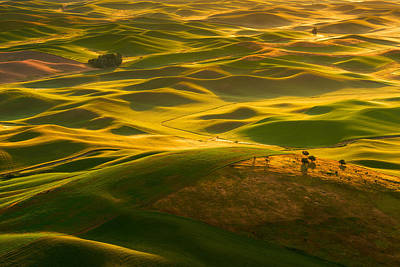 Photograph - Palouse Swells by Dan Mihai