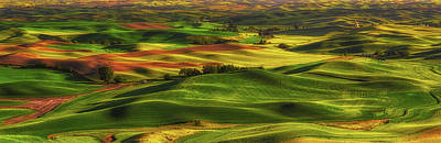 Photograph - Palouse by Thomas Hall