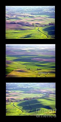 Photograph - Palouse Trio by Idaho Scenic Images Linda Lantzy