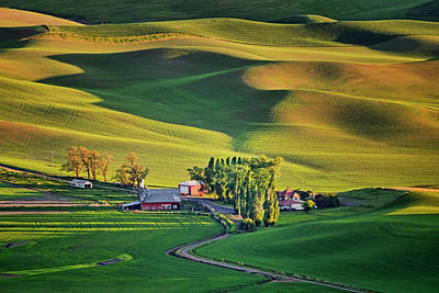 Photograph - Palouse - Washington - Farms - 7 by Nikolyn McDonald