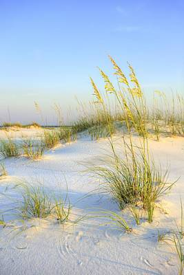 Panama City Beach Art Print by JC Findley
