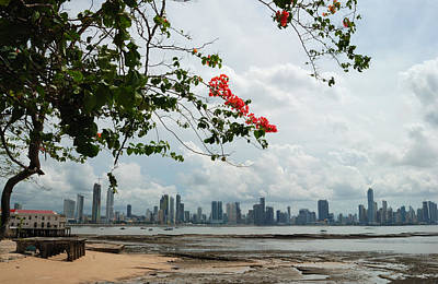 Panama City Downtown Art Print