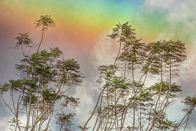 Photograph - Panama Rainbow by Mike Braun