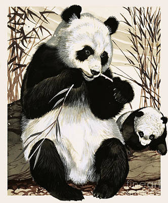 Endangered Wildlife Painting - Panda And Cub by English School