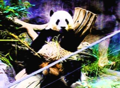 Fuzzy Digital Art - Panda Bear 1 by Kristalin Davis