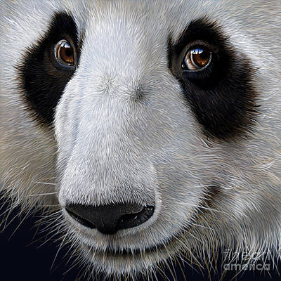 Panda Bears Painting - Panda Bear by Jurek Zamoyski