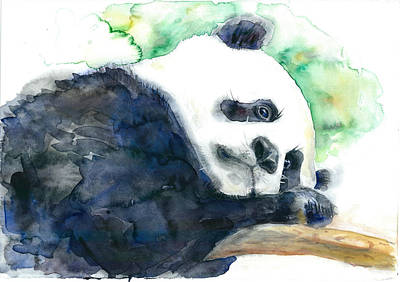 Watercolor Animals Painting - Panda by Dim Dom