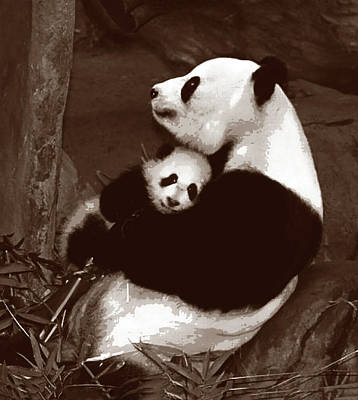 Panda Cub Wall Art - Painting - Panda Love Mom And Baby Quadtone by Elaine Plesser