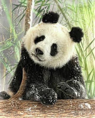 Digital Art -  Panda by Trudi Simmonds