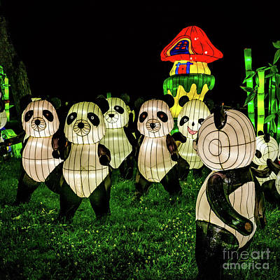 Photograph - Pandas - Chinese Laterns by Nick Zelinsky