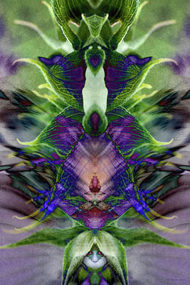 Digital Art - Pandora's Dream by WB Johnston