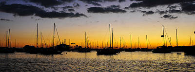 Photograph - Pano Harbor by David Lee Thompson