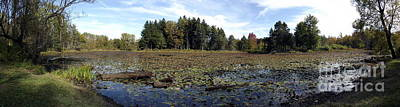 Photograph - Panorama Of A Lake At Reinstein Woods Nature Preserve In New York State by Rose Santuci-Sofranko