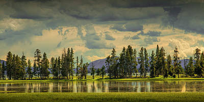 Photograph - Panorama Of A Row Of Pine Trees Along The Shore Of Yellowstone Lake by Randall Nyhof