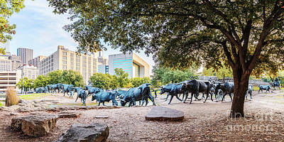 Cattle Drive Photograph - Panorama Of Cattle Drive At Pioneer Plaza In Downtown Dallas - North Texas by Silvio Ligutti