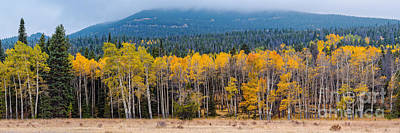 Panorama Of Changing Aspens At Rocky Mountain National Park - Estes Park Colorado Print by Silvio Ligutti