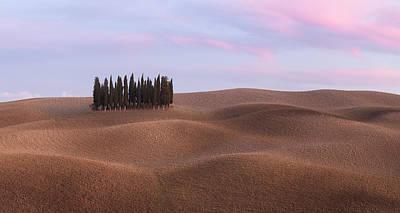 Photograph - Panorama Of Cypress Grove At The Field by Nickolay Khoroshkov