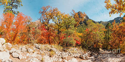 Photograph - Panorama Of Fall Foliage Colors In Mckittrick Canyon - Guadalupe Mountains National Park - Texas by Silvio Ligutti