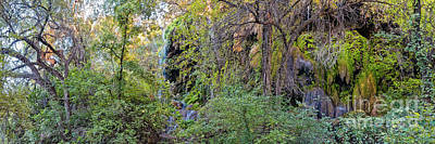 Photograph - Panorama Of Gorman Falls At Colorado Bend State Park - Lampasas Texas Hill Country by Silvio Ligutti