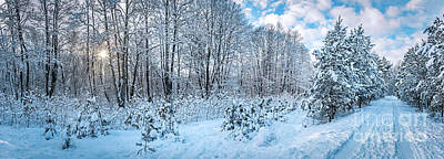 Frozen Photograph - Panorama Of Winter Park With Frozen Trees And Snow. by Michal Bednarek