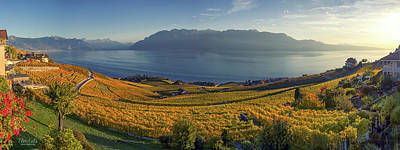 Photograph - Panorama On Lavaux Region, Vaud, Switzerland by Elenarts - Elena Duvernay photo