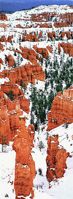 Photograph - Panorama Winter Storm Blankets Thors Hammer Bryce Canyon Utah by Dave Welling