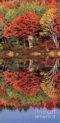 Photograph - Panoramic Fall Color Thorton Lake Upper Penninsula Michigan by Dave Welling