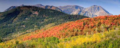 Photograph - Panoramic Fall Colors In The Wasatch Back. by Johnny Adolphson