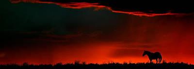 Cloudscape Digital Art - Panoramic Horse Sunset by Mark Duffy