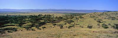 Panoramic Landscape Of Lewa Print by Panoramic Images