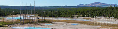 Photograph - Panoramic Norris Geyser Basin by Jennifer White