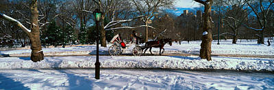 Carriage Horse Photograph - Panoramic View Of Snowy City Street by Panoramic Images