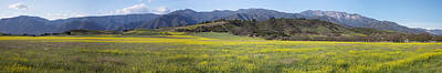 Ojai Wall Art - Photograph - Panoramic View Of Upper Ojai In Spring by Panoramic Images