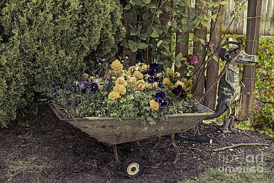 Photograph - Pansies In A Wheelbarrow by Elaine Teague