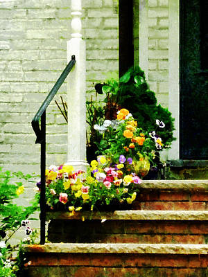 Photograph - Pansies On Steps by Susan Savad