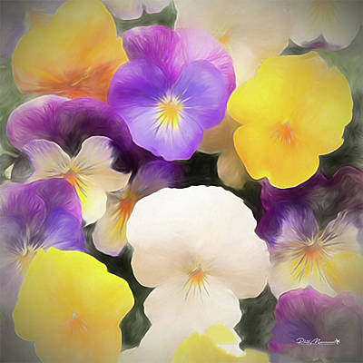 Digital Art - Pansies by Phil Mancuso
