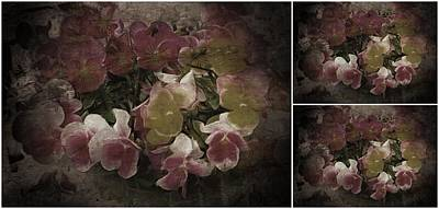 Photograph - Vintage Victorian Pansies Collage by Dorothy Berry-Lound