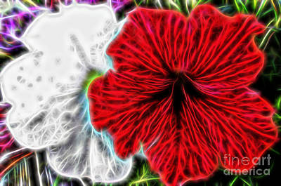 Digital Art - Petunia Fractal by D Hackett